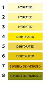 Dehydration Scale